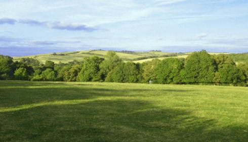 field at findon venue